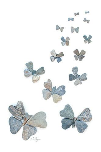 Carousel Butterflies
