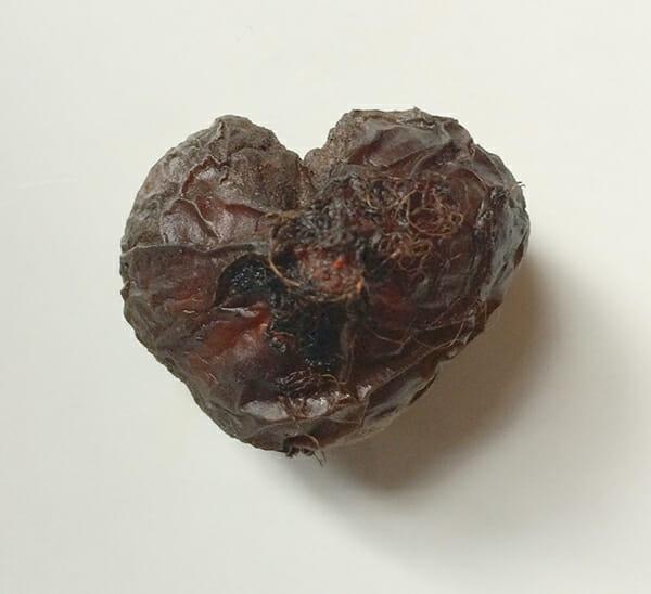 love beet